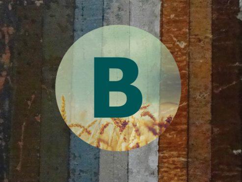 Billede af byggeladens logo